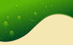 Green abstract background with drops of water Royalty Free Stock Image