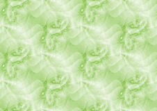 Green abstract background. Green fractal background with abstract pattern royalty free illustration