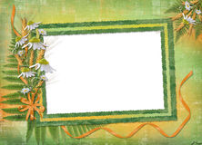 Green abstract background with frame and bouque Royalty Free Stock Photo