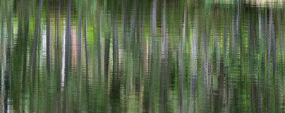 Green abstract background with light strips. As reflection in water Stock Photo