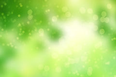 Green abstract background picture with bokeh lights Stock Image