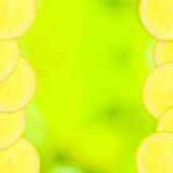 Green abstract background with slices of lemon Stock Image