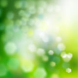 Green abstract background. Green spring abstract background. Soft focus Royalty Free Stock Photo