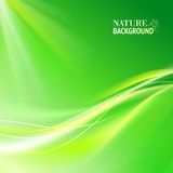 Green abstract background. Stock Photography