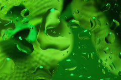 Green abstract background with water drops Stock Images