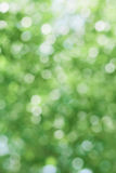 Green abstract blur background texture Stock Photo