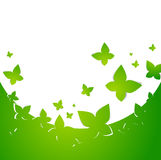 Green Abstract Butterfly Frame Royalty Free Stock Photo