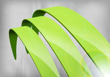 Green Abstract Curves Stock Images