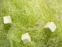Green abstract decoration fiber Stock Image