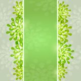 Green Abstract Designr Card Stock Images