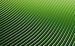 Green abstract image of lines background. 3d render Stock Photos