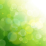 Green abstract light background. Stock Photo