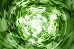 Green abstract light background defocused Royalty Free Stock Image