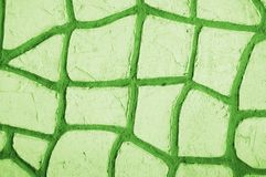 Green abstract patterns. For texture, background, text or image royalty free stock photos