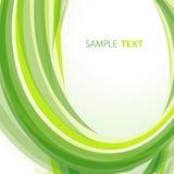 Green abstract template Stock Photos