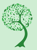 Green abstract tree. A vector illustration of a beautiful tree in green tones Stock Photos