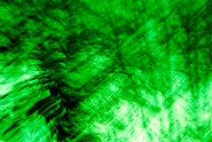 Green Abstract Trees Stock Photography