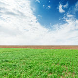 Green agriculture field and blue sky with clouds. Over it Stock Photography