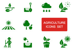 Green agriculture icon Royalty Free Stock Photography