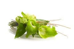 Green Alepes kalla bouquet Royalty Free Stock Photos