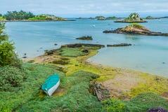 Green alga Brehat island france Royalty Free Stock Photos