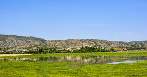 Green algae on the surface of Uchali Lake. Green algae on a surface of Uchali Lake in Soon Valley, Khushab. Uchali Lake is the most popular tourist attraction in Stock Photography