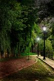 Green alley in the city royalty free stock images