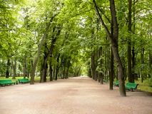 Green Alley Park Stock Photo