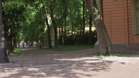 Green alley of a park in summer sunny day, group of people start cycling stock footage