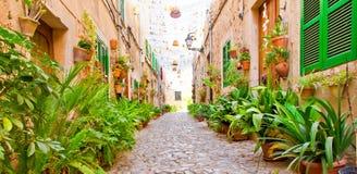 Green alley in Valldemossa, Mallorca. Romantic alley in Valldemossa, Mallorca, Spain stock photos