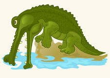 Green alligator. Illustration of green alligator on the river Stock Photos