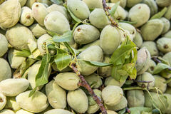 Green Almond Nuts. Green almond, also known as bitter almond- natural source of vitamins Stock Photo