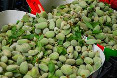 Green Almonds for sale in bulk. Green almonds available for sale in bulk at the open air market stock images
