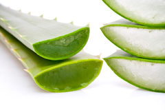 Green Aloe Vera slices Royalty Free Stock Photos
