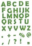 Green alphabet. Letters filled with broccoli on white background Royalty Free Stock Photography