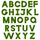 Green alphabet Stock Photos