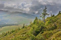 Green alpine landscape Stock Photo