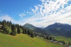 Green alpine meadow Royalty Free Stock Image