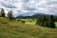 Green alpine meadows in Bavaria Royalty Free Stock Images