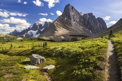 Free Green Alpine Meadows Mountain Landscape Great Summertime Hiking Trail Canadian Rockies Kootenay National Park Stock Photos - 158306273