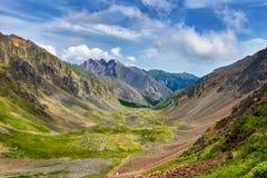 Green alpine meadows in mountain valley Stock Photos