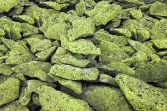 Green alpine rocks background Stock Photography