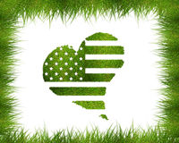 Green American flag Stock Photos