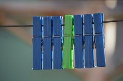 Green amongst blue Stock Images