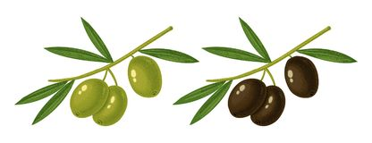 Free Green And Black Olives Stock Photography - 141775512