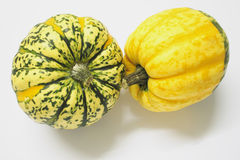 Green And Yellow Ornamental Squashes Stock Image