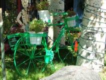 Green antique iron bicycle planter Royalty Free Stock Photos