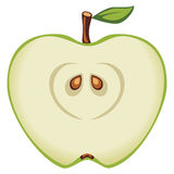 Green apple. Vector illustration of green apple Royalty Free Stock Image
