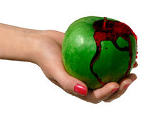 Green apple 2. Green apple bleeding in a hand royalty free stock photography