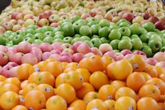 Green apple. Different  colour apple varieties at a fruit farm Royalty Free Stock Photos
